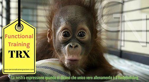Lezioni-TRX-Genova-Graziano